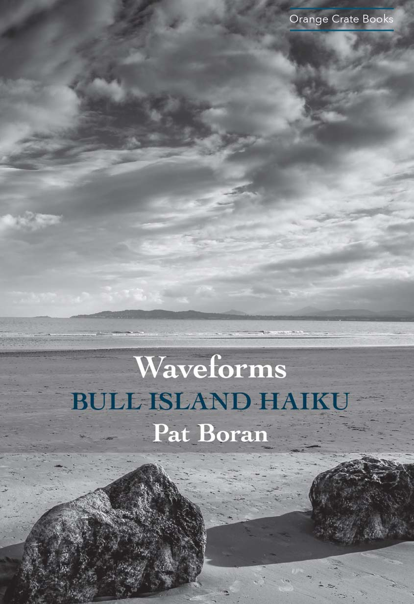 Waveforms: essay and sample haiku by Pat Boran